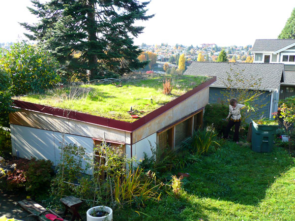 Green Roofs And Puget Sound Hugeasscity